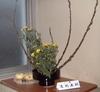 051102konno_yuri