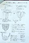 080219tokubetu_koza_furukawa_akem_8