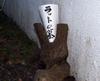 080223_0221tokubetukouza_morigut_10