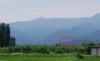 09061920sinsyuji_azumino08_view_of_