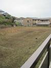 100404yamazakura23_by_hosimiyukisan