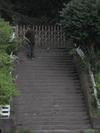 100404yamazakura56_by_hosimiyukisan